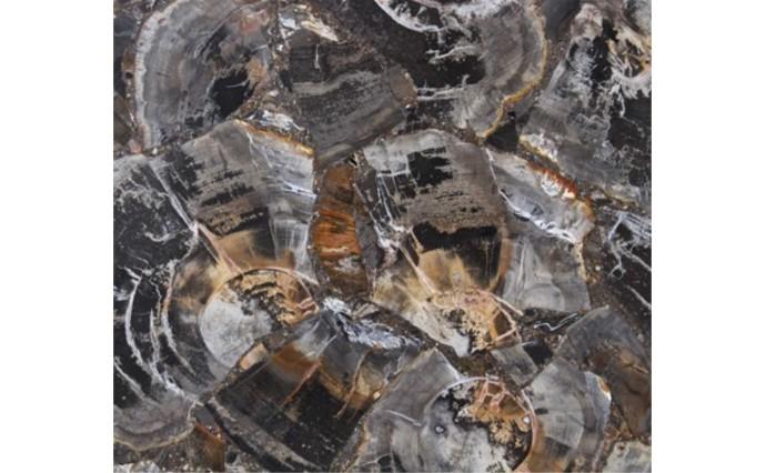 Эксклюзивные камни - Black Petrified