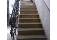 Гранитная лестница Kashemir Gold